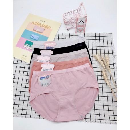 501 Antibacterial Panties