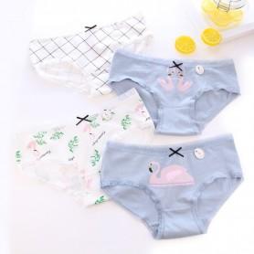 K213 Kawaii Panties 5pcs Set 可爱内裤5件套装