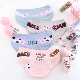 K215 Kawaii Panties 5pcs Set 可爱内裤5件套装