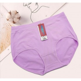 3001 Plus Size Cotton Panties