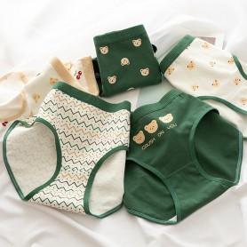 K301 Kawaii Panties 5pcs Set 可爱内裤5件套装