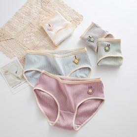 K302 Kawaii Panties 5pcs Set 可爱内裤5件套装