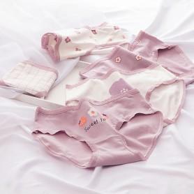 K303 Kawaii Panties 5pcs Set 可爱内裤5件套装