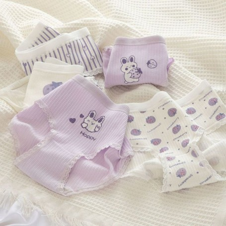 K305 Kawaii Panties 5pcs Set 可爱内裤5件套装