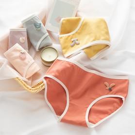 K308  Kawaii Panties 5pcs Set 可爱内裤5件套装