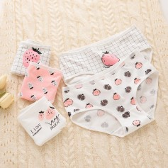 K202 Kawaii Panties 5pcs Set 可爱内裤5件套装