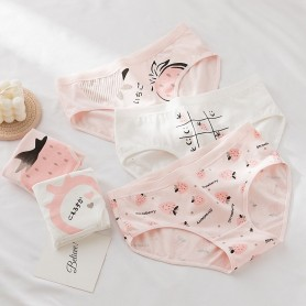 K203 Kawaii Panties 5pcs Set 可爱内裤5件套装