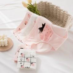 K203 Kawaii Panties 5pcs Set 可爱内裤5件套装